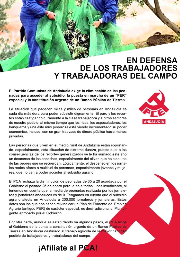 PCA_CAMPO copia